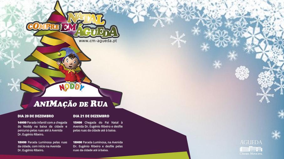 Animação de Natal + Compre em Águeda!